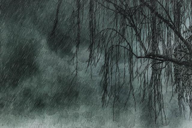 Rain Rain
