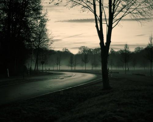 early morning dusk road street cologne blackwhite fogg sky nature nikkor50mm18ai nikond700 sunset winter