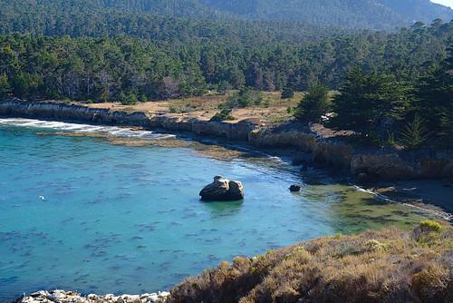 Whaler's Cove, Point Lobos | by aenigmatēs