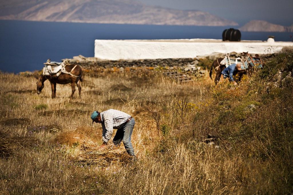 Folegandros life of locals