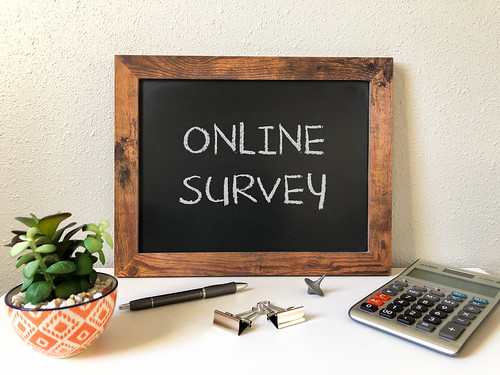 Online Survey | by Got Credit