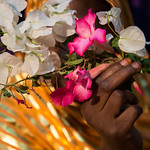 IOM Mauritania - Nasra in her shop, Flowers and Victims of trafficking