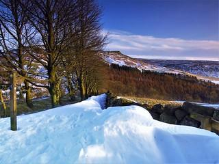 Snow Drift | by trev.pix