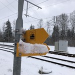 2019-01-09 Zollbrück_Fred (11)