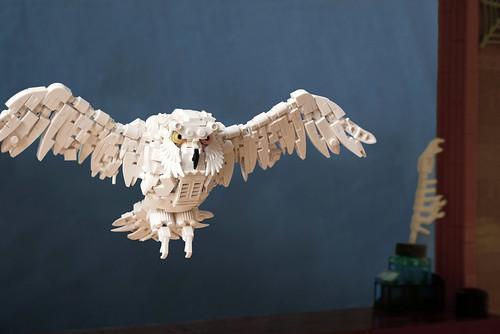Hedwig | by Simon NH
