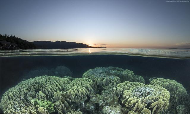 Over and Under shot. Papua Pardise Eco Resort, Raja Ampat, Indonesia