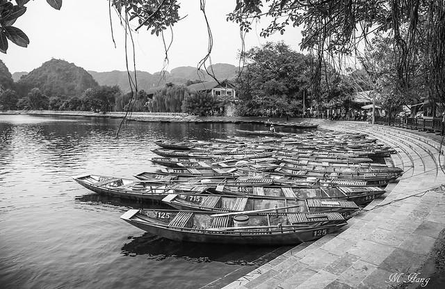 DSC_1473 _ Tam Coc, Ninh Binh - VN