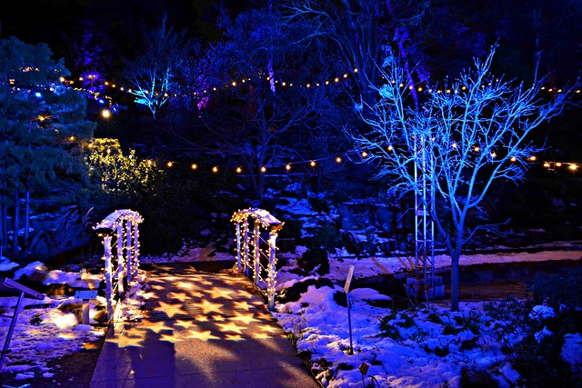 Winter Lights at the Rock, David Braley and Nancy Gordon Rock Garden, Royal Botanical Gardens, Hamilton, ON