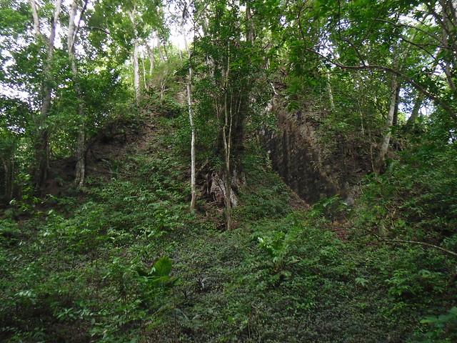 Mayan Pyramid, unexcavated