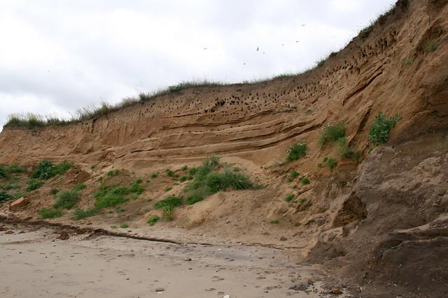 The coast near Barmston