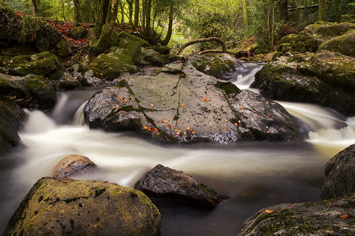 longtimberwoods rivererme ivybridge walk woodland forest bend rushing flow water stream longexposure cokinfilter nd8 canoneos50d tamron1750mm autumnal autumn october fallenleaves autumnleaves movement outdoors landscape devon uk mossy wilderness fallentree arching arch bow rocks rocky waterfall falls outandabout familyadventure halftermholidays dartmoor nationalpark tree trees