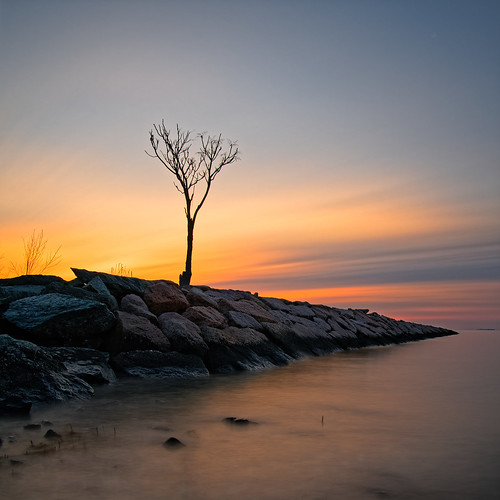 olympus ep5 panasonic 14mmf25 milford ct connecticut sunrise ocean landscape january 2019 longexposure rock water beach tree pb