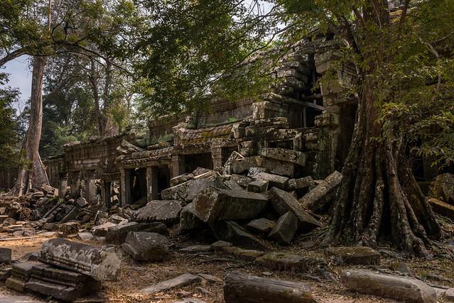 Prasat Ta Prohm (ប្រាសាទតាព្រហ្), Siem Reap, Cambodia