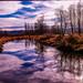 Cloud & Reflections at Burnaby Lake, Burnaby, BC, Canada by Syd Rahman