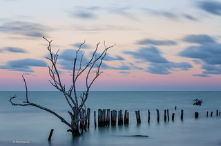 1 minute exposure of old beach breakwall - Holbox, Mexico | by Phil Marion