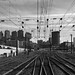 capwell posted a photo:	The city skyline, from the back of Amtrak.