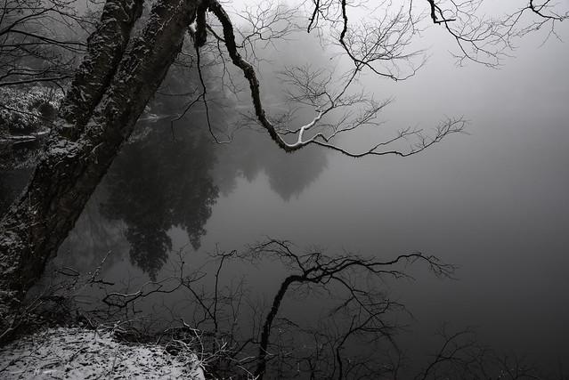 Delicate Winter Lines