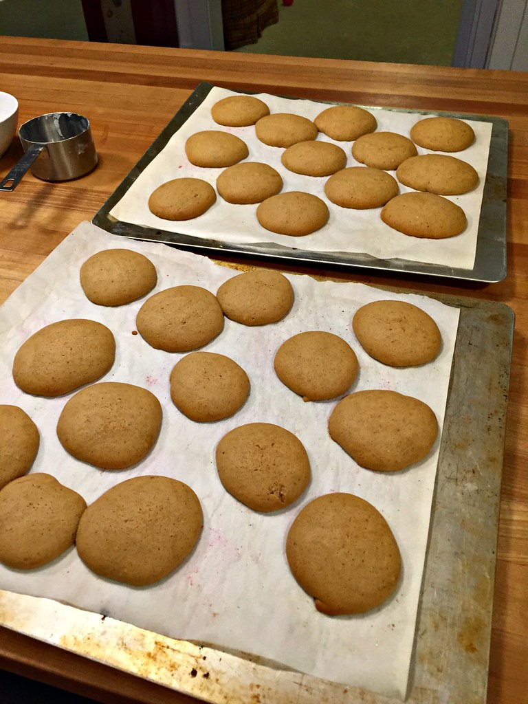 molasses cookies fresh from the oven