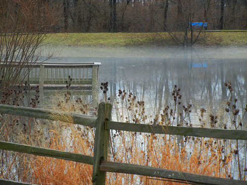 project52 park lake landscape bench fence winter indianapolis indiana 2019 mist nature pond reed