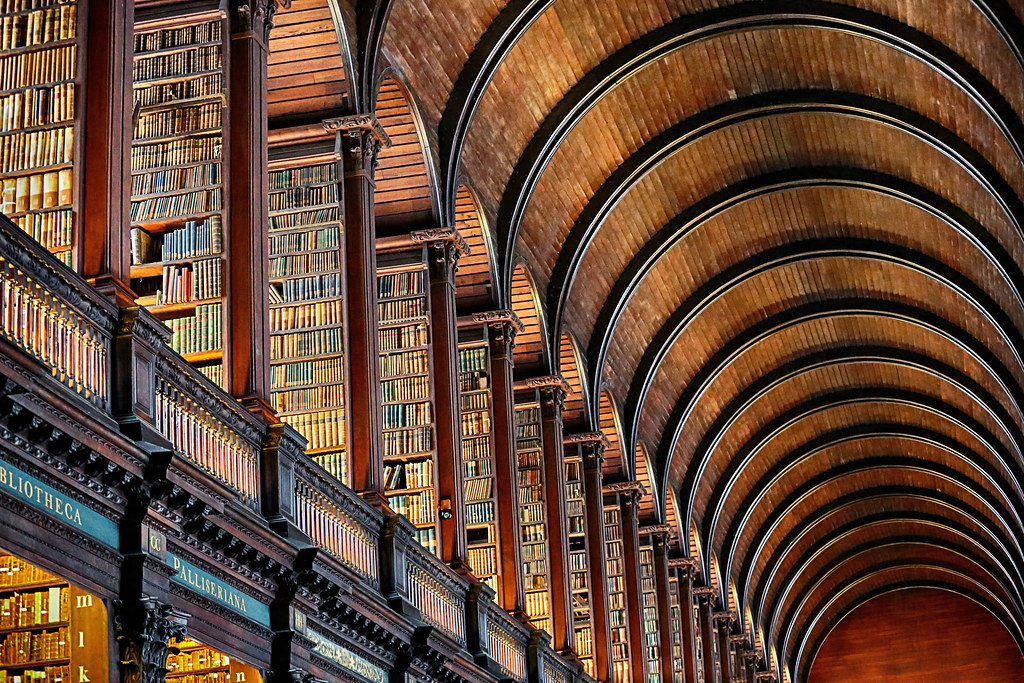 Book Cases And Barrel Vaulted Ceiling Thank You Very
