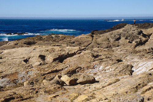 Person on the rocks, South Shore trail, Point Lobos | by aenigmatēs