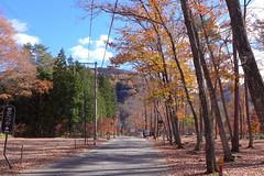 塔のへつりまで、駅から歩いて数分。途中は雑木林で秋は紅葉に彩られる