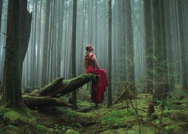 In Silence She Waits
