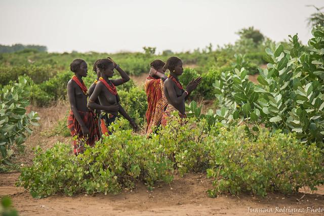 Etiopía - Mujeres de la tribu Dasanech