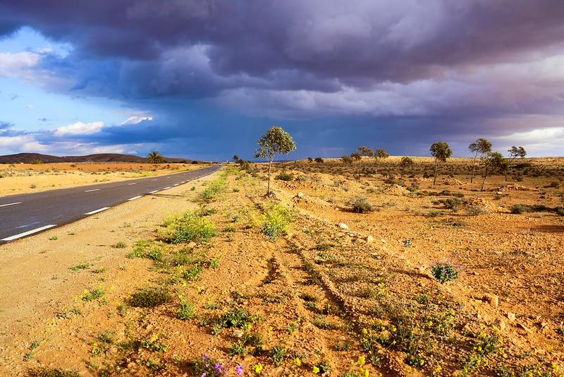 Wüstenstraße 1