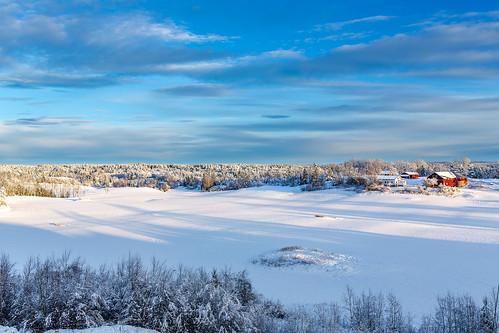 Winter in Vestby   by Einar Schioth
