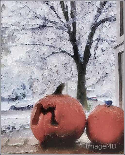 Michigan Pumpkins