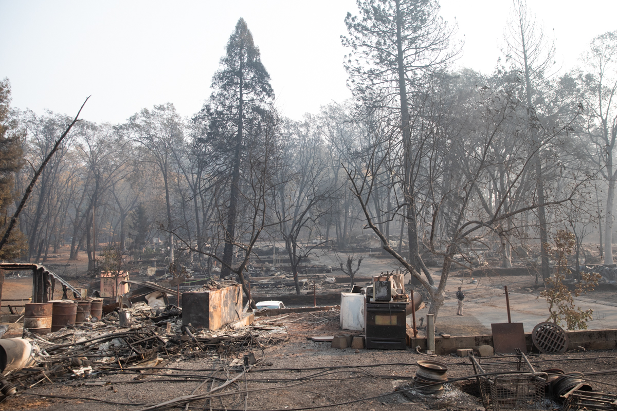 photo of camp fire
