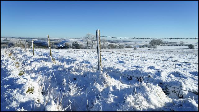 Snowy fence - HFF