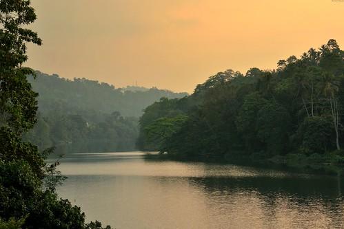 srilanka kandy rivière sunset arbre luxuriant granderivièredesable fleuve eau