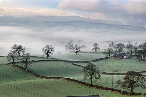 hedge hedgerow green mist misty house farm farmland agricutral lines fog foggy cold cumbria edenvalley morning nikon d5500 sigma 1770mm england uk frost frosty winter january