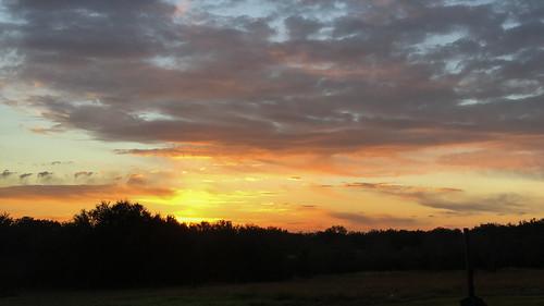 mikaelbehrens guadalupedelta landscape texas cbc mcfaddin unitedstates us