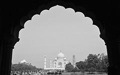 India 80