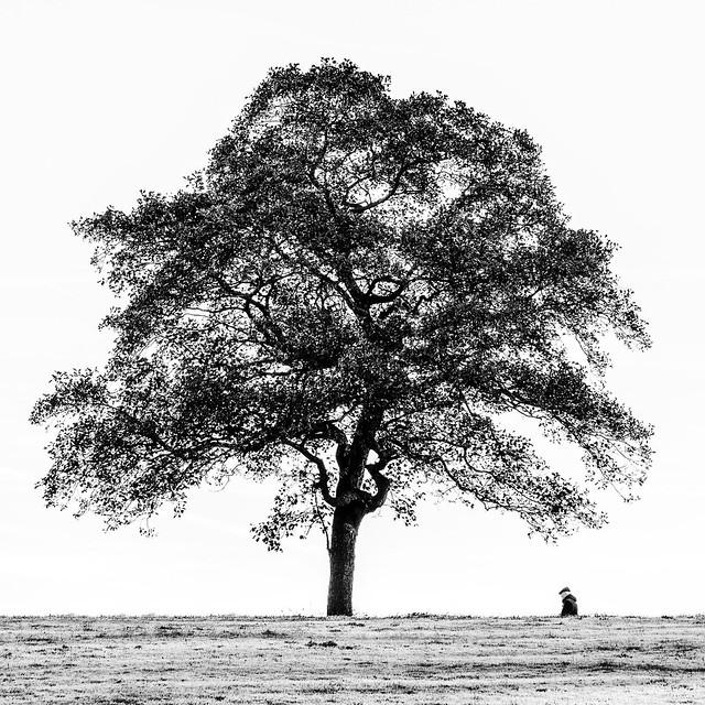 048 Solitude