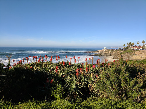 La Jolla beach views | by tlkativ
