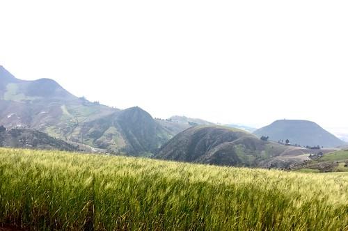 Mogle Hills, Ethiopia