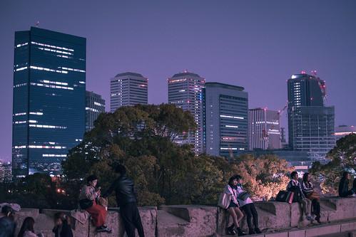 Osaka Castle Sakura   by inefekt69