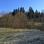 2018_12_12_7_Brücken_Aaretal_Kiesental (139)