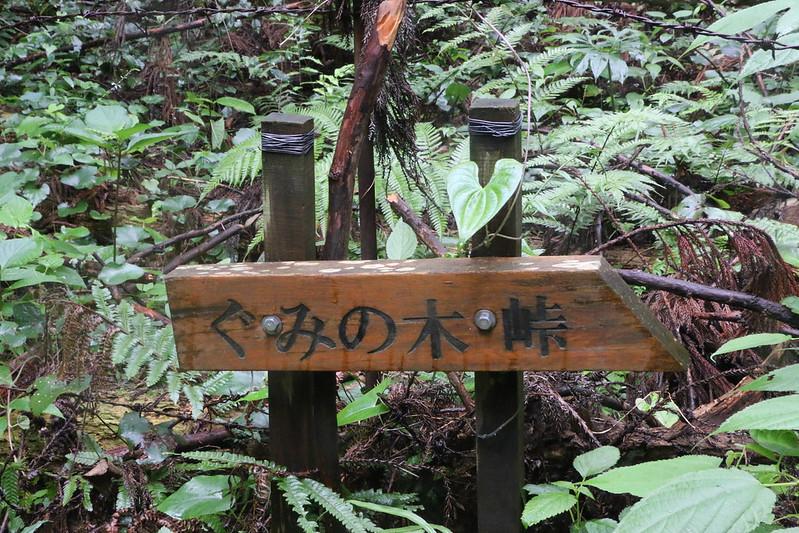 大平山 ぐみの木峠