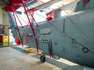 SH-2G(I) tail   by errolgc