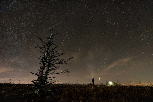 leonid meteor appalachiantrail at tennessee northcarolina cherokeenationalforest