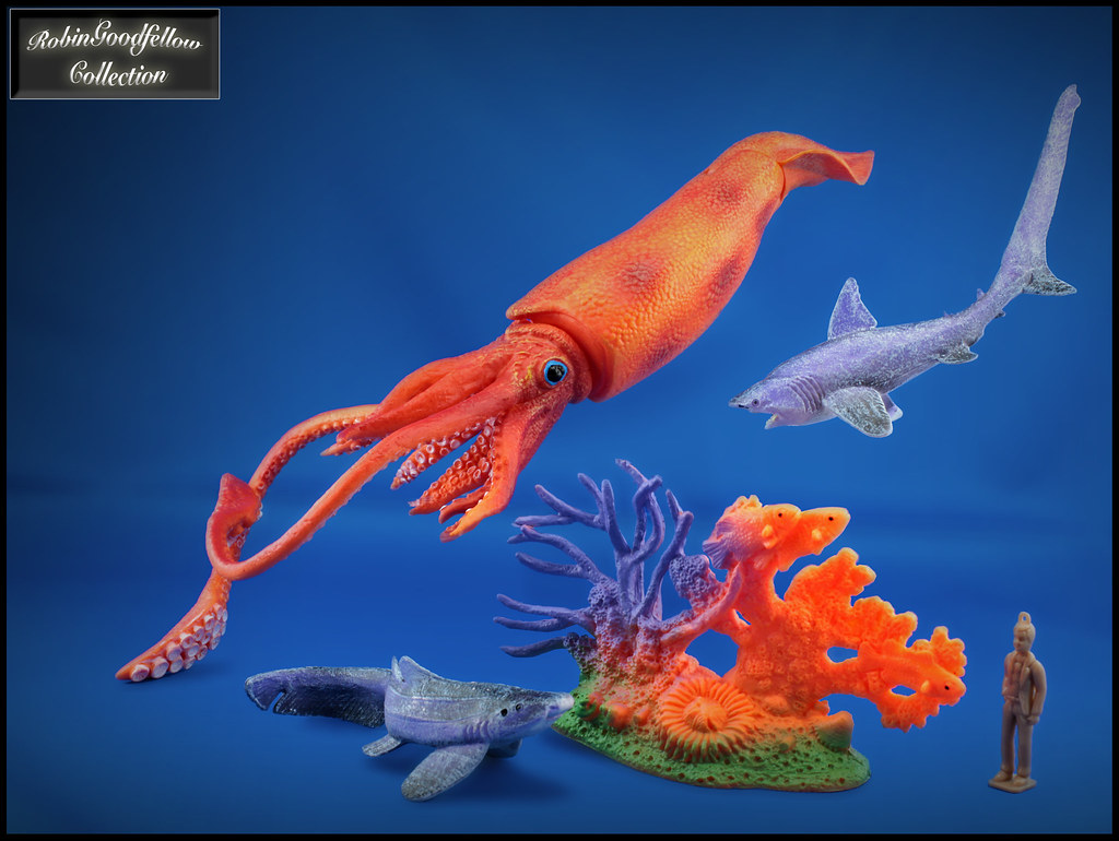 Deep Sea Creatures & Giant Squid | Happy Kin (China