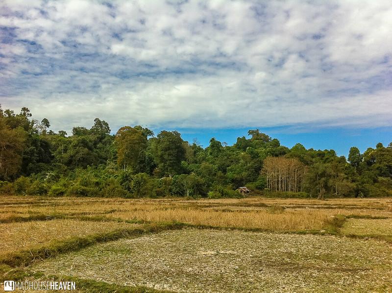 Laos - 0251