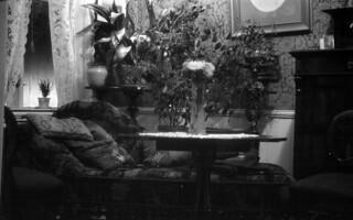 Kabinettrommet med divan (1923)