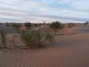 Sahara, foto: Petr Nejedlý