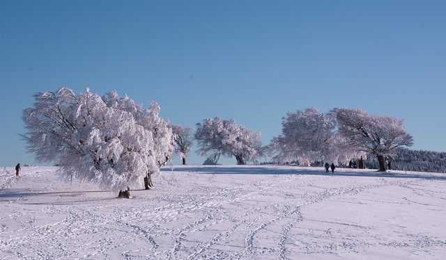 *❄*A place I dearly love*❄*